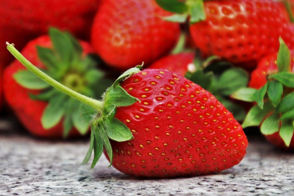 fresas y fesones