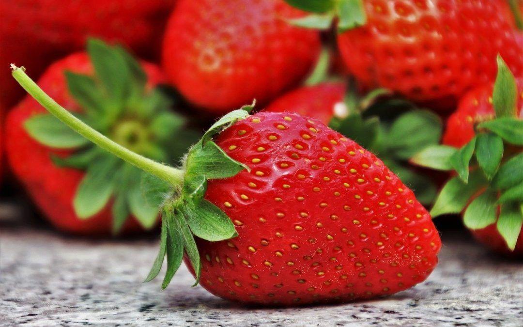 ¿Cuál es la diferencia entre la fresa y el fresón?
